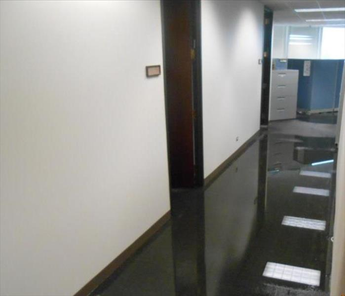 Commercial Water Loss in Oak Brook Before