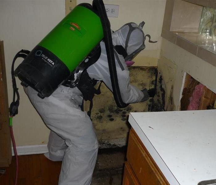 Mold Remediation How to Keep Mold from Coming Back