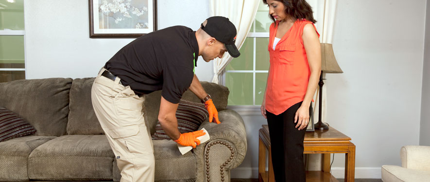Oak Brook, IL carpet upholstery cleaning
