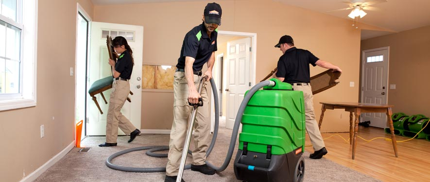 Oak Brook, IL cleaning services